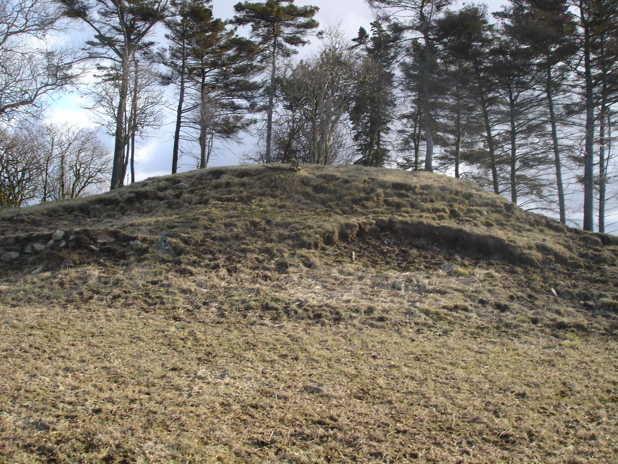 Bronsealder gravhauger, Sola Historielag
